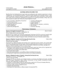 sample director of nursing resume httpjobresumesamplecom61 job objective resume samples