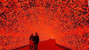Nabana No Sato: Japan's most <b>extravagant light</b> display | CNN Travel