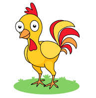 Image result for chicken clipart