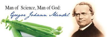 「gregor johann mendel pea plant experiment」の画像検索結果