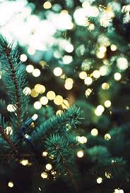 screen background image handy living: pine tree with lights wallpaper  pine tree with lights wallpaper
