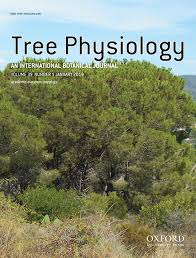 Comparative transcriptional and metabolic responses of Pinus pinea ...