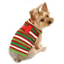 Nτυμένος ή όχι ο σκύλος μας;