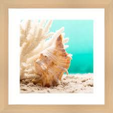Картина в багете Ekoramka 40x40 см Ракушка на пляже BE-103 ...