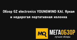 Обзор <b>GZ electronics</b> YOUNGWIND KAI. Яркая и недорогая ...