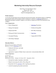 resume examples  internship resume example customer service resume    marketing internship resume example for profile summary   core competencies and career experience
