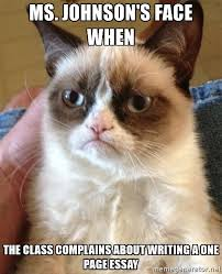 ms johnsons face when the class complains about writing a one  grumpy cat face   ms johnsons face when the class complains about writing a one