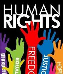 essay on human rights day in south africa   essay for you    essay on human rights day in south africa   image
