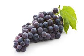 Image result for grape