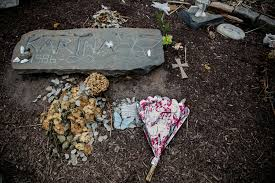 family dna searches seen as crime solving tool and intrusion on a memorial where ms vetrano was found dead credit sam hodgson for the new york times
