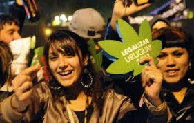 Výsledek obrázku pro valka proti drogam legalizace