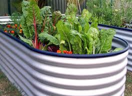 Small Picture Knot Garden Free Landscape Design Plans Figure Garden Trends