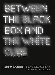 the invisible dragon  essays on beauty  revised and expanded  hickeybetween the black box and the white cube  expanded cinema and postwar art
