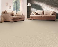 carpet care gurus