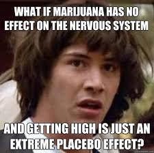 What If marijuana has no effect on the nervous system and getting ... via Relatably.com