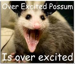 Over-Excited Possum memes | quickmeme via Relatably.com