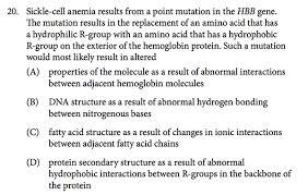 Ap Biology Essay Questions Evolution Wells  amp  Trembath
