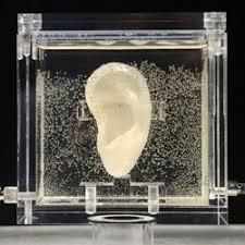 3D Printed <b>van Gogh's</b> Severed Ear - 3D <b>Printing</b> Industry