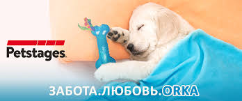 <b>SPECIAL DOG</b>