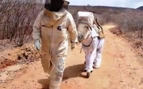 Αποτέλεσμα εικόνας για σεξι μελισσοκομοι