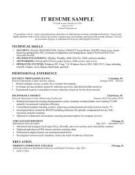 resume examples  information technology resume examples resume    information technology resume examples   technical skills and professional experience