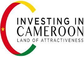 """Résultat de recherche d'images pour """"investir au Cameroun"""""""