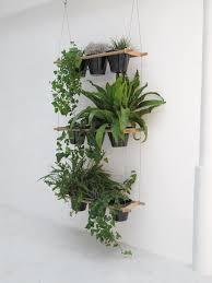 99 great ideas to display houseplants indoor plants decoration see how in these below no matter modern your apartment is furnished or on the c balcony furnished small