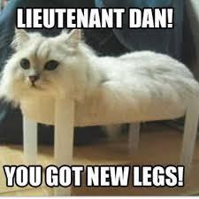 Lieutenant Dan you got new legs! | Cute Animal Memes via Relatably.com
