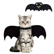 Apparel White <b>Halloween Pet Bat</b> Wings Cat <b>Dog Bat Costume Bat</b> ...