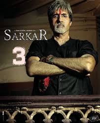 Sarkar 3 Watch Online Full Movie (2017)