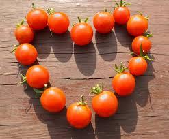 Billedresultat for tomater