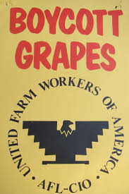 best images about cesar chavez diego luna boycott grapes ufw