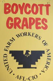 17 best images about cesar chavez diego luna boycott grapes ufw