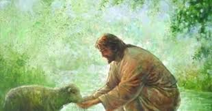 Image result for jesus and lamb