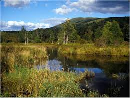 Image result for catskill mountains