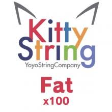Image result for fat kitty yoyo
