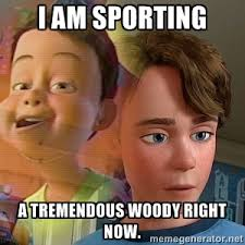 I am sporting a tremendous Woody right now. - PTSD Andy | Meme ... via Relatably.com
