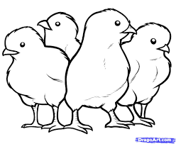 Small Picture Awesome Baby Chick Coloring Pages Print Images Coloring Page
