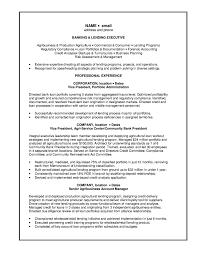 manager resume  executive  seangarrette cosle resume banking lending executive ckxhxc   manager resume