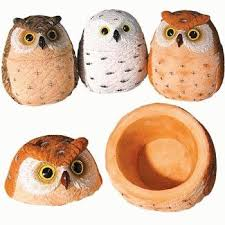 Cabin Axentz Owl Treasure Trinket Jewelry Ring <b>Box</b> w/Lid <b>Figurine</b>