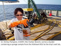 cioert 2015 cruise florida atlantic university harbor shirley pomponi sponge sample