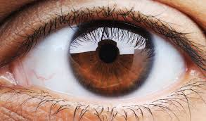 What <b>Eye</b> Color Says About Your Health and <b>Personality</b> | The Healthy