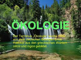 Bildergebnis für ökologie