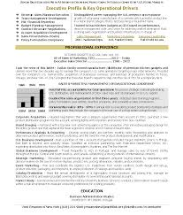 best ceo resume samples cipanewsletter cover letter sample ceo resumes sample ceo resumes ceo