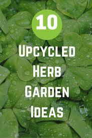 gardening plant patio herb