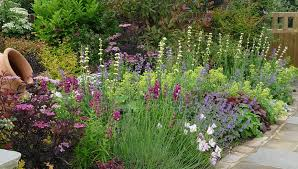 Small Picture Pete Sims English Garden Borders Pinterest