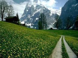 لكل محبي صور الطبيعة  اكبر تجميع لصور الطبيعة Images?q=tbn:ANd9GcQcsnZIZ56Zxulw6CUSb73aMhPl0iwPFwHvZoPhZpHMQ4kdWTT2