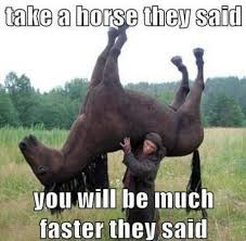 Take-a-horse-they-said.jpg via Relatably.com