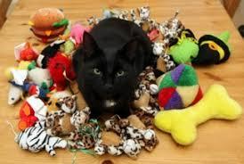 Купить <b>игрушки</b> для кошек по низкой цене с доставкой по Москве ...