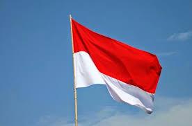 Hasil gambar untuk bendera merah putih